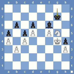 Position after 63...Kg7